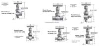 U Series Needle Valves - PARKER