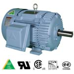 HYUNDAI Crown TritonTM Series Motors-Premium Efficiency-TEFC Enclosure-Rigid Base-Three-Phase-208-230/460 and 460 Volt